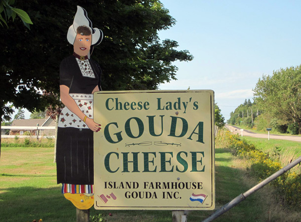 The Goudy Lady Shop
