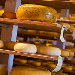 Glasgow Glen Farm Cheese Aging Room