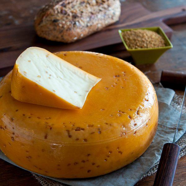 Fenugreek Gouda Cheese